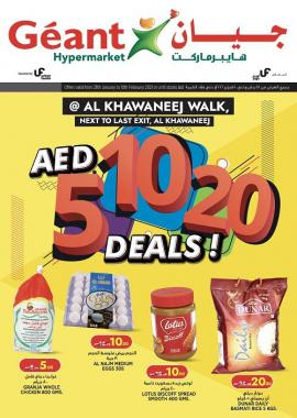 Geant offer