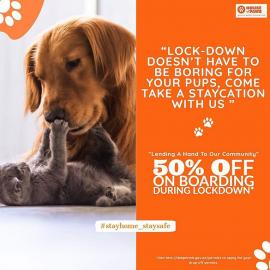House Of Paws offer