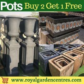 Royal Garden Centre offer
