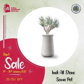 Dubai Garden Centre offer