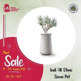 Dubai Garden Centre offer
