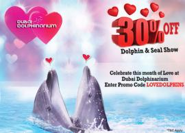 Dubai Dolphinarium offer